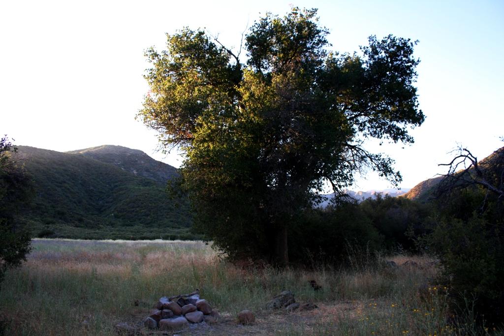 Santa Barbra Canyon Dick Smith Wildnis