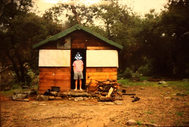 South Fork Cabin In 1991.