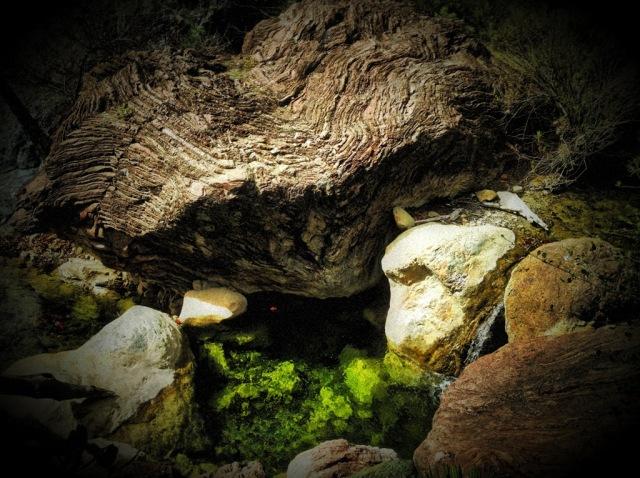 Oso Creek