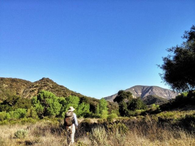 mono creek hike
