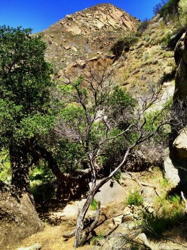 Mono Creek Narrows Camp (3)