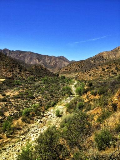 Mono Creek ogilvy