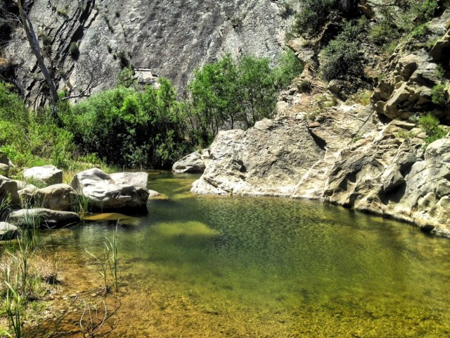 mono creek pool 1