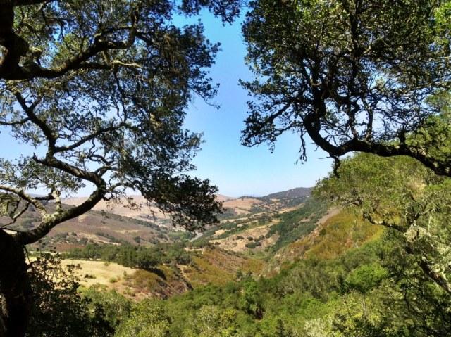 Gaviota State Park hikes