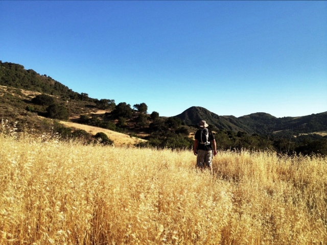 Gaviota State Park hiking