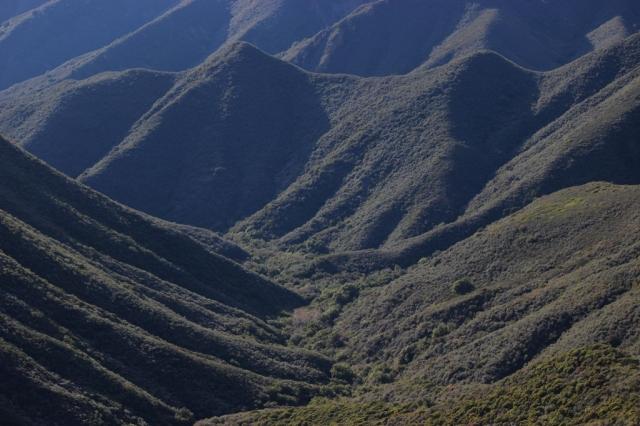 los Padres National Forest marijuana grow