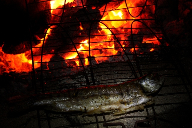 fire roasted rainbowtrout
