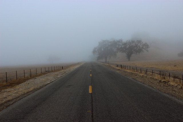 Figueroa Mountain foggy Road