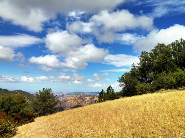 Figueroa Mountain summer hike