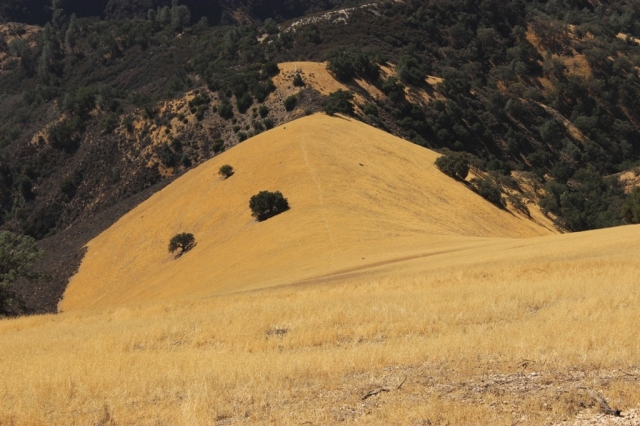 Grass Mountain Figueroa