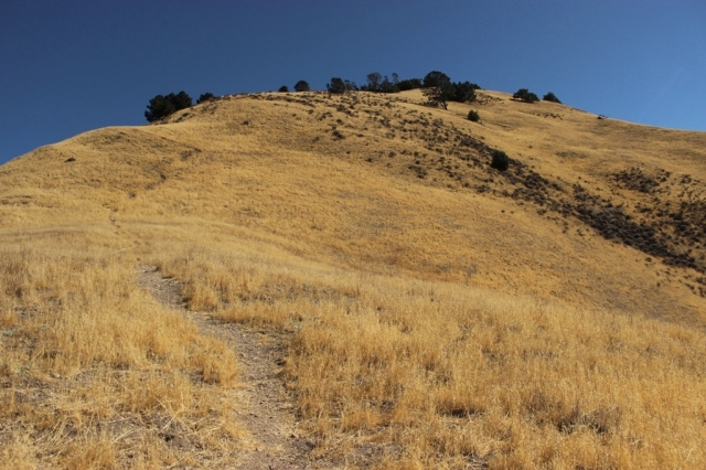 Grass Mountain Trail
