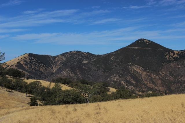 Grass Mountain Zaca Peak
