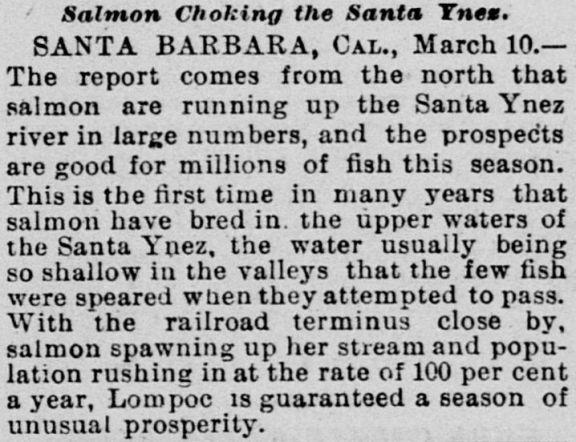 salmon santa ynez river