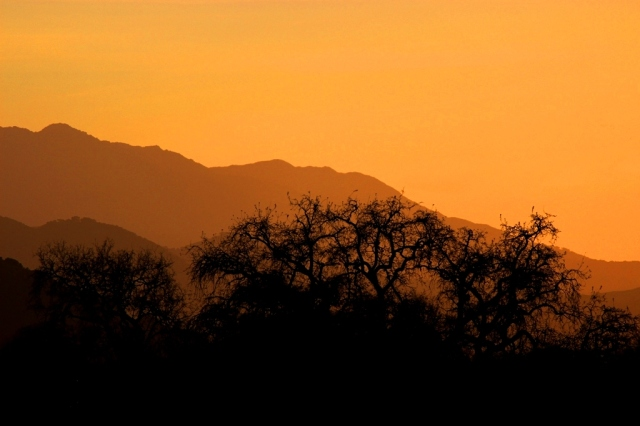 Figueroa Mountain sunset