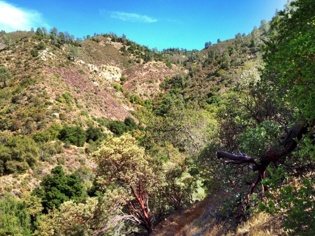 Ballard Camp Alamo Pintado Creek headwaters Figueroa Mountain