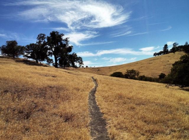 La Jolla Trail Figueroa Mountain