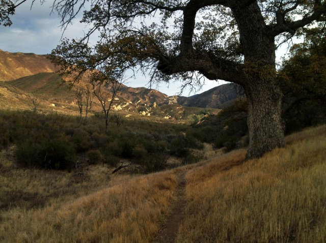 Potrero Trail San Rafael Wilderness