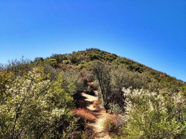 San Ysidro Peak Trail