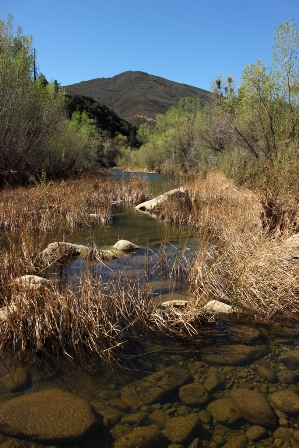 Sespe Creek pools