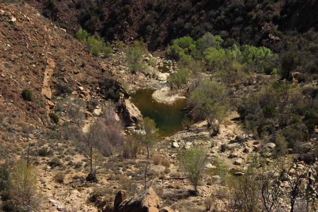 Sespe Creek Swimming Hole