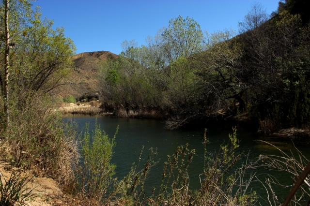 Sespe River Creek