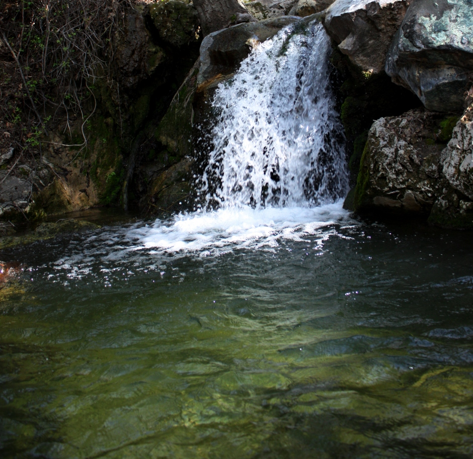 Santa Barbara creek hikes los padres national forest