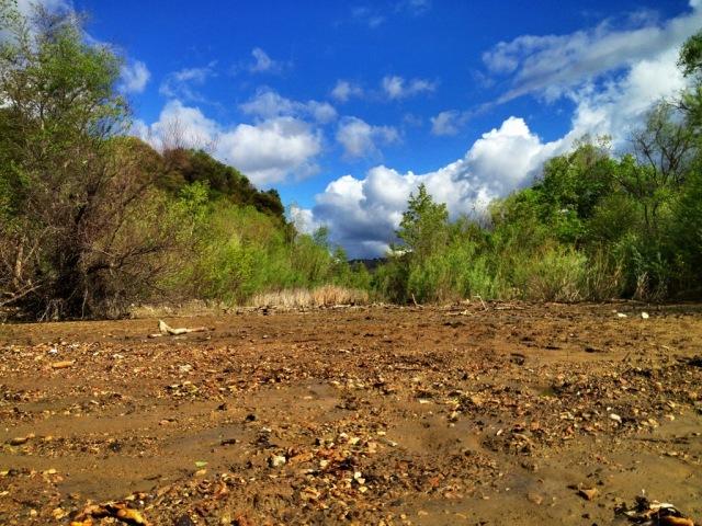 Santa Ynez River spring