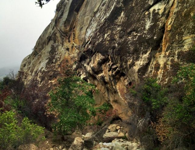Santa Ynez River tributary creek