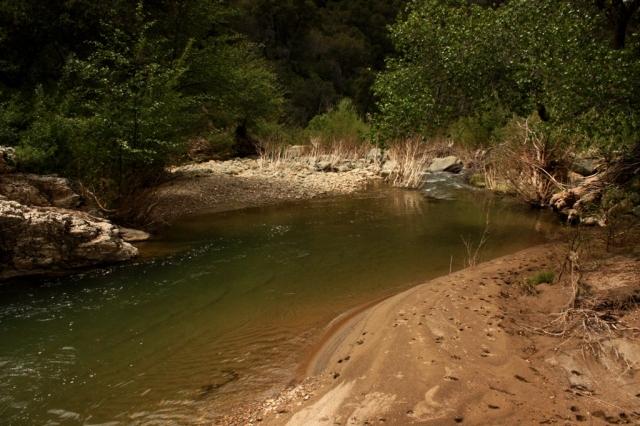 Santa Ynez River tributary stream