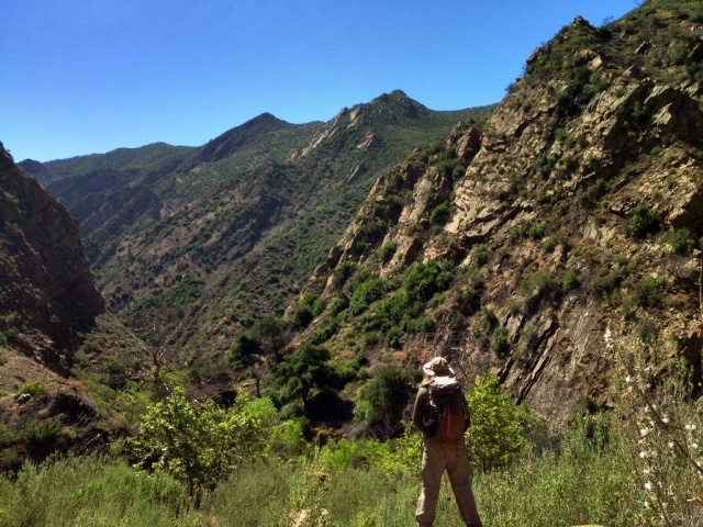 Mono Creek Narrows canyon