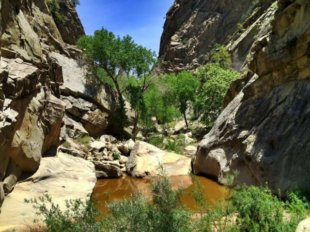 Mono Creek Narrows hike