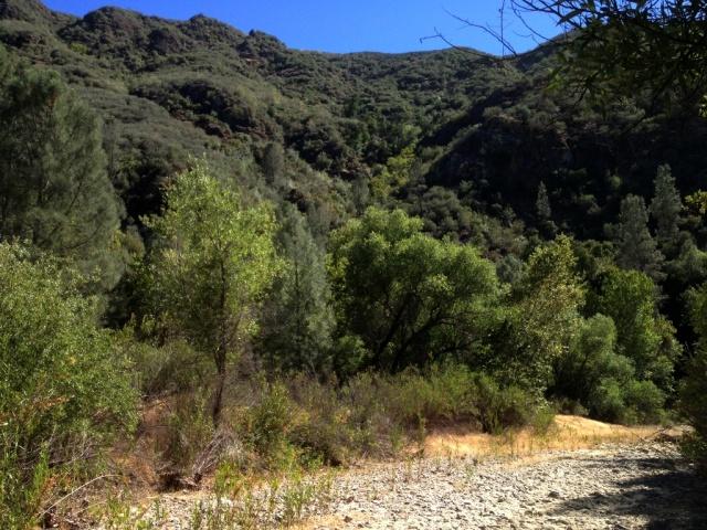 Manzana Creek summer
