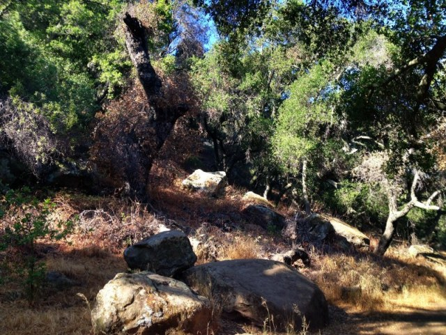 Chumash Bedrock Mortar Grinding Stone