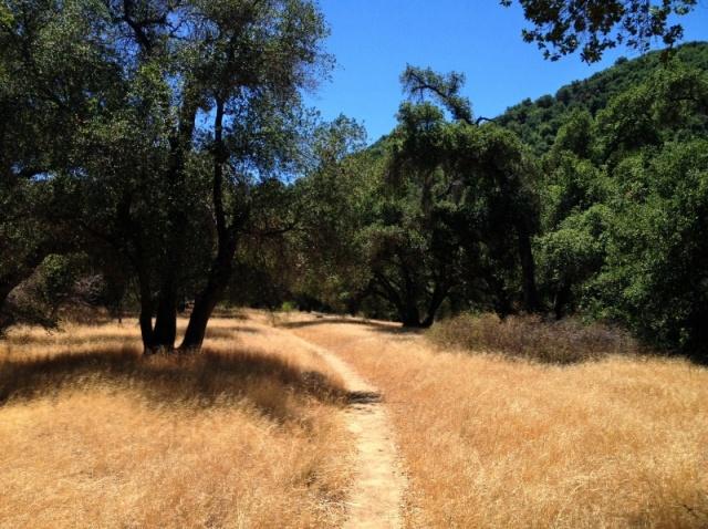 Santa Barbara hikes Los Padres National Forest Santa Ynez Mountains