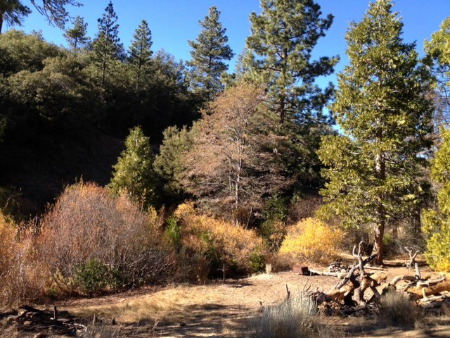 Pine Mountain Lodge Camp Sespe