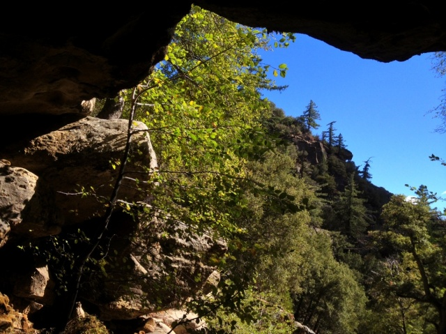 Piedra Blanca Creek hikes