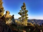 pine-mountain-chorro-spring