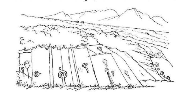 Arran Scotland petroglyphs Stronach Ridge