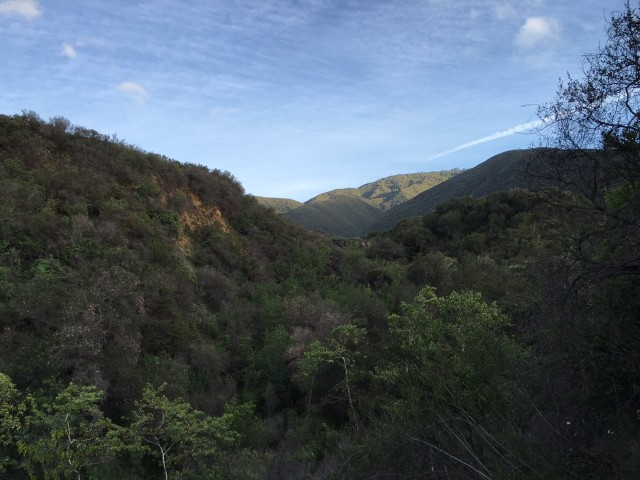 Santa Ynez Mountains Los Padres Forest hikes Santa Barbara