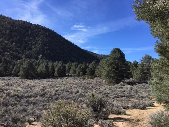 Chumash Wilderness