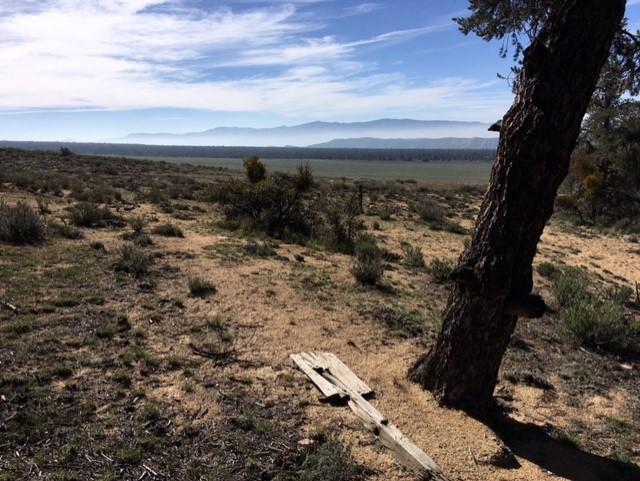 San Emigdio hike