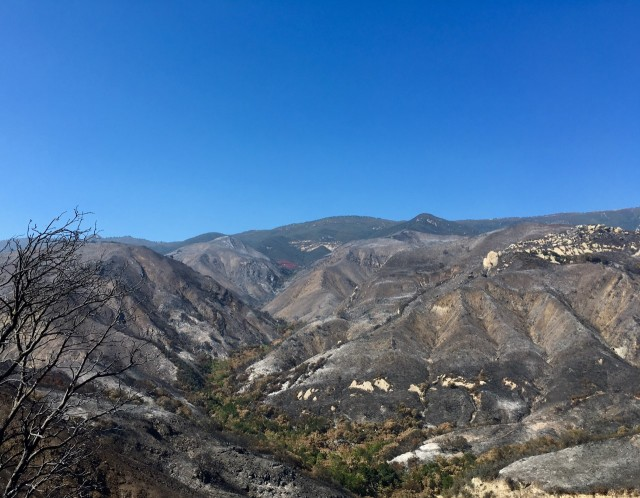 gaviota-sherpa-fire-2016