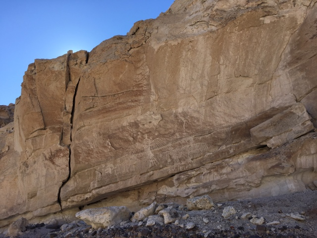 saline-valley-white-cliff-petroglyphs-condors-thunderbirds